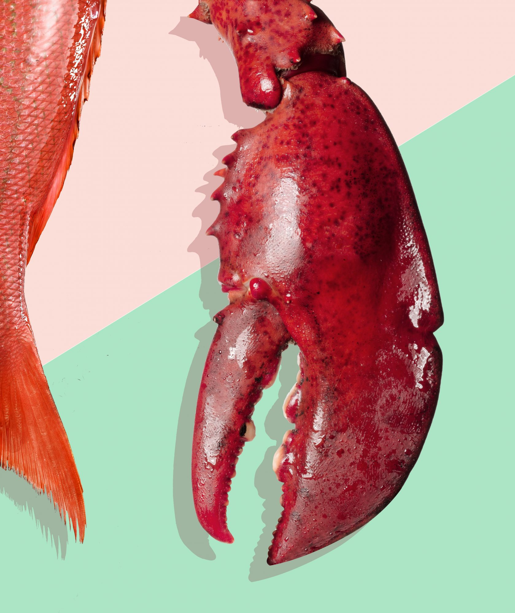 How to Select, Store, and Serve Seafood Safely, According to an Expert