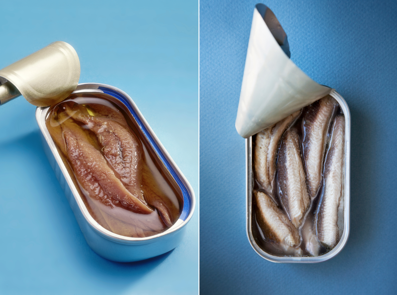 What's the Difference Between Sardines and Anchovies?