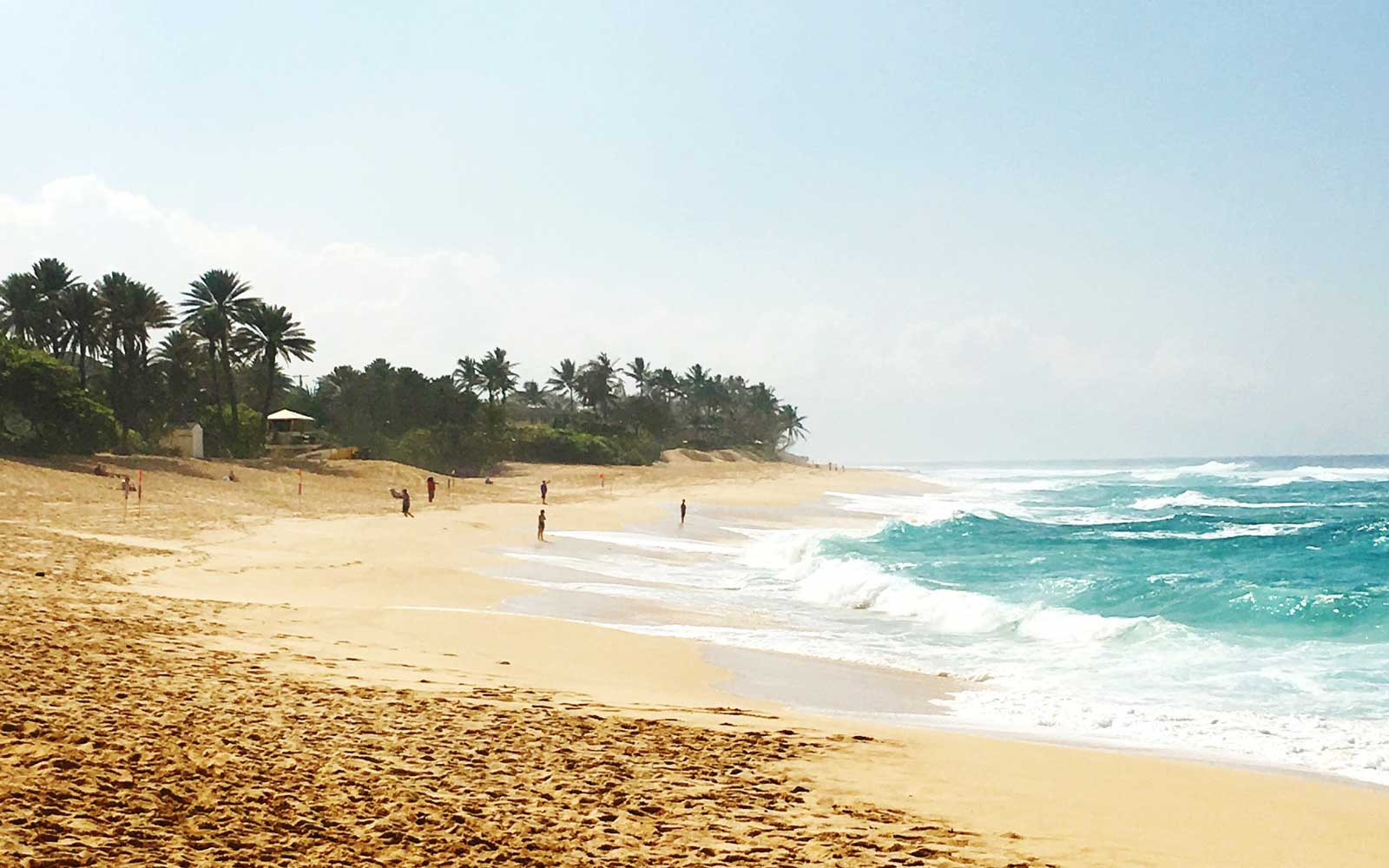 Beach at Haleiwa, Hawaii