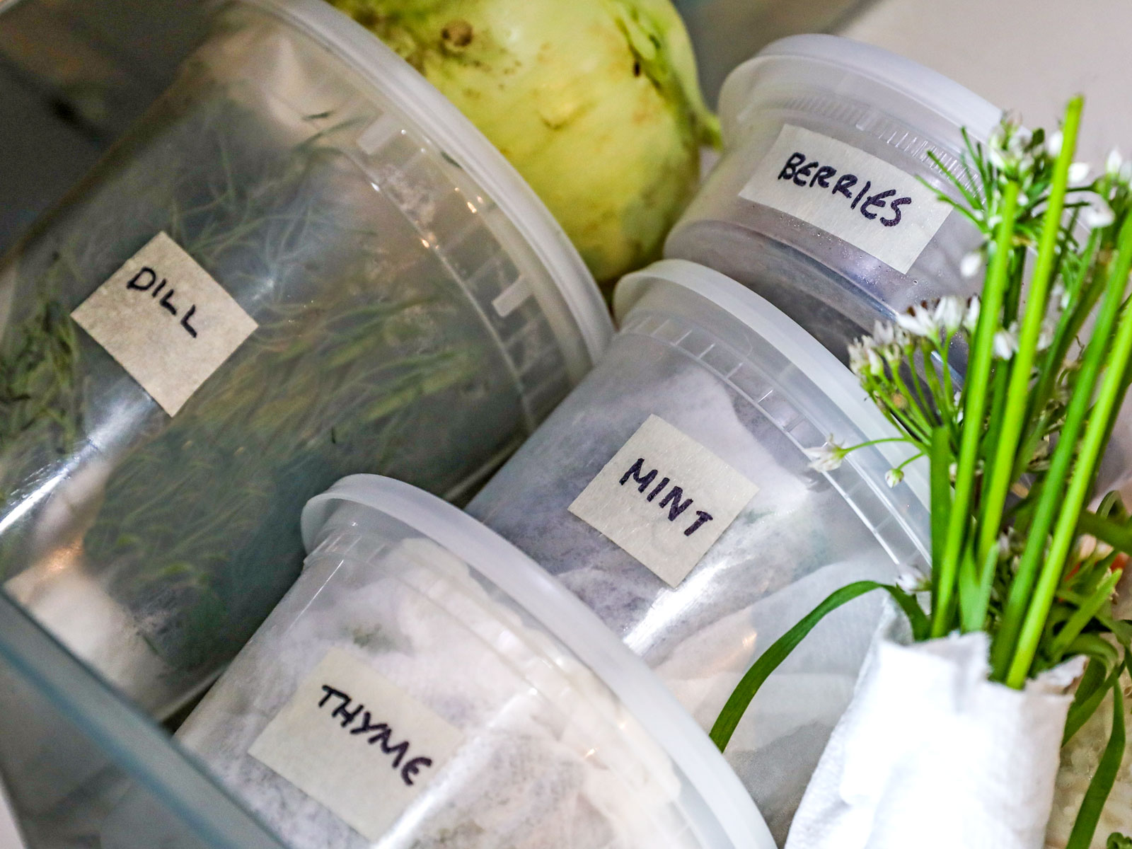 Store Herbs in Containers