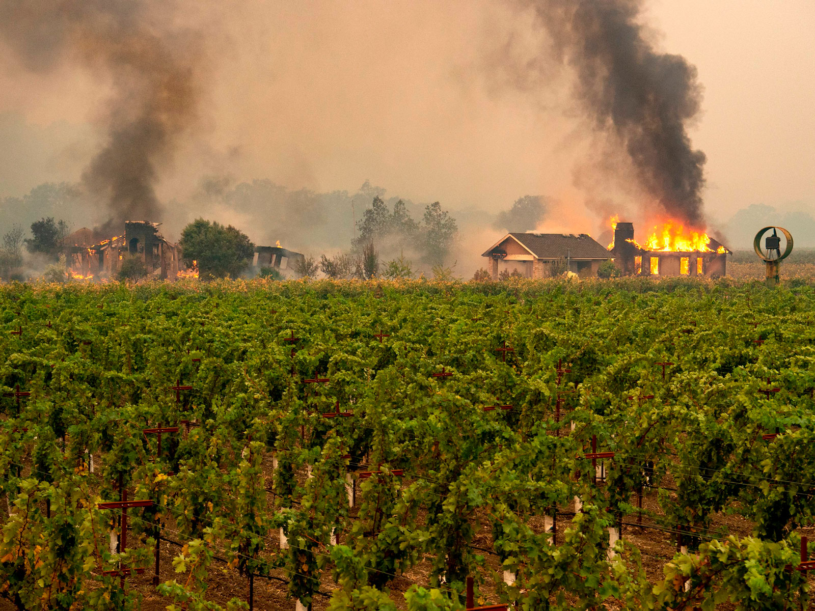 sonoma-wine-wildfire-FT-BLOG1019.jpg