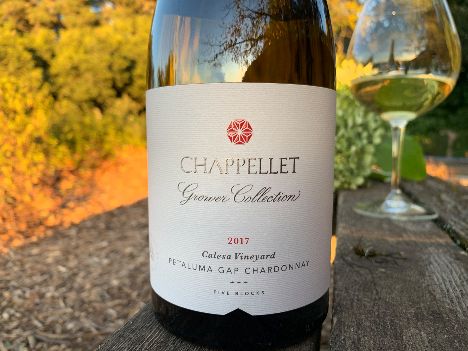 2017 Chappellet Grower Collection Calesa Vineyard Petaluma Gap Chardonnay