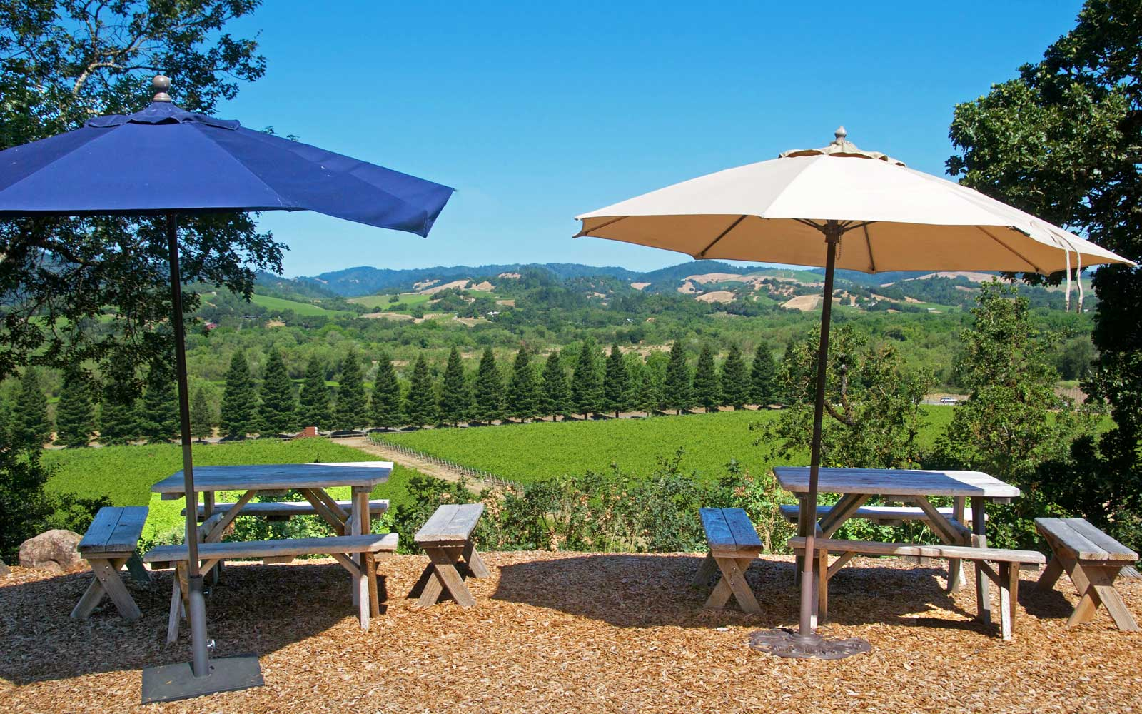View from Copain Wines, Sonoma, California