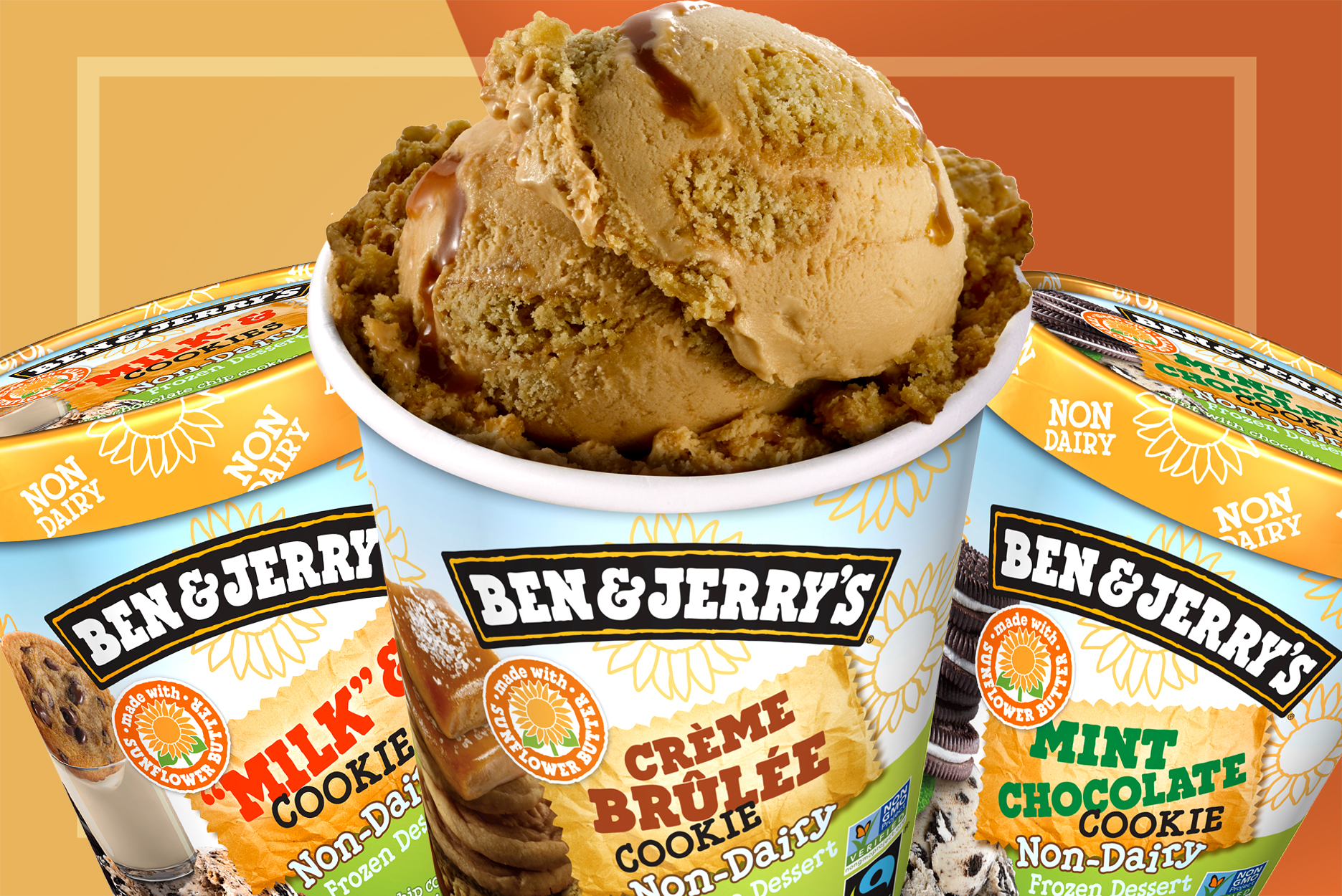 Ben & Jerry's sunflower butter