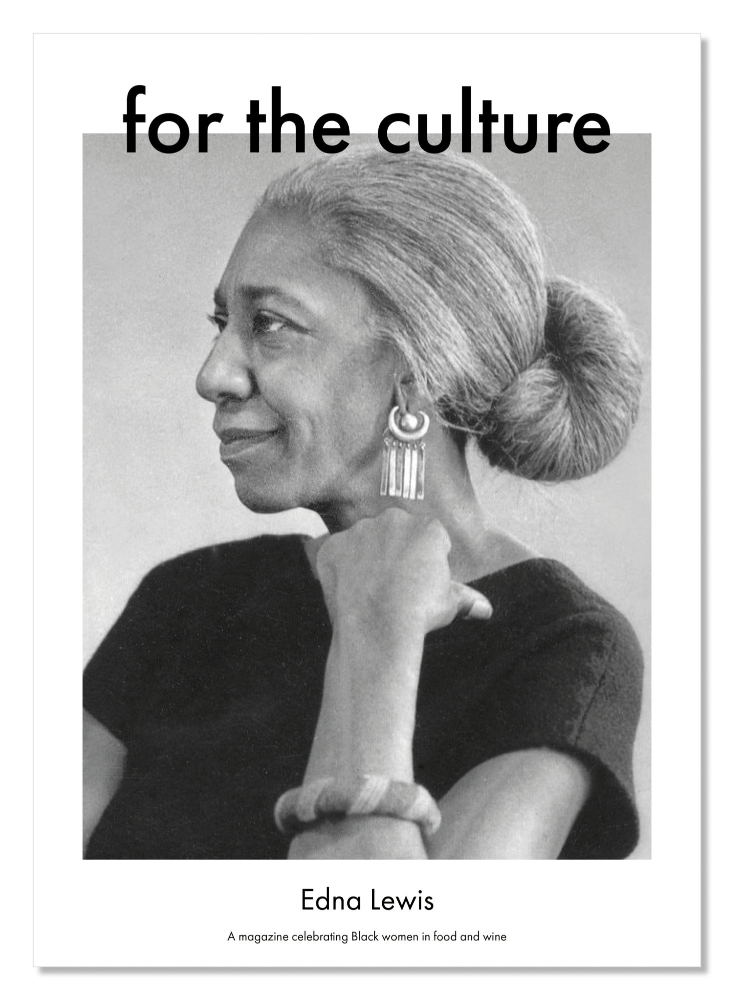 For the Culture IndieGogo