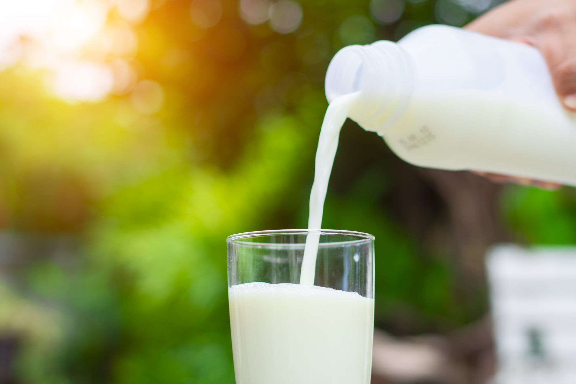Organic Milk Keeps Longer Than Regular. But Why?