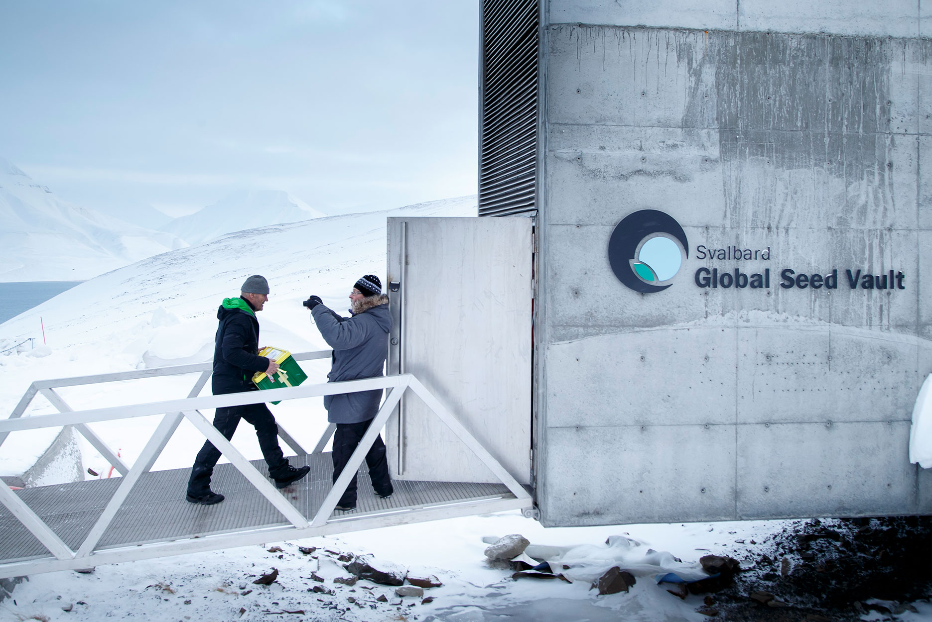 Workers deliver seeds into the vault