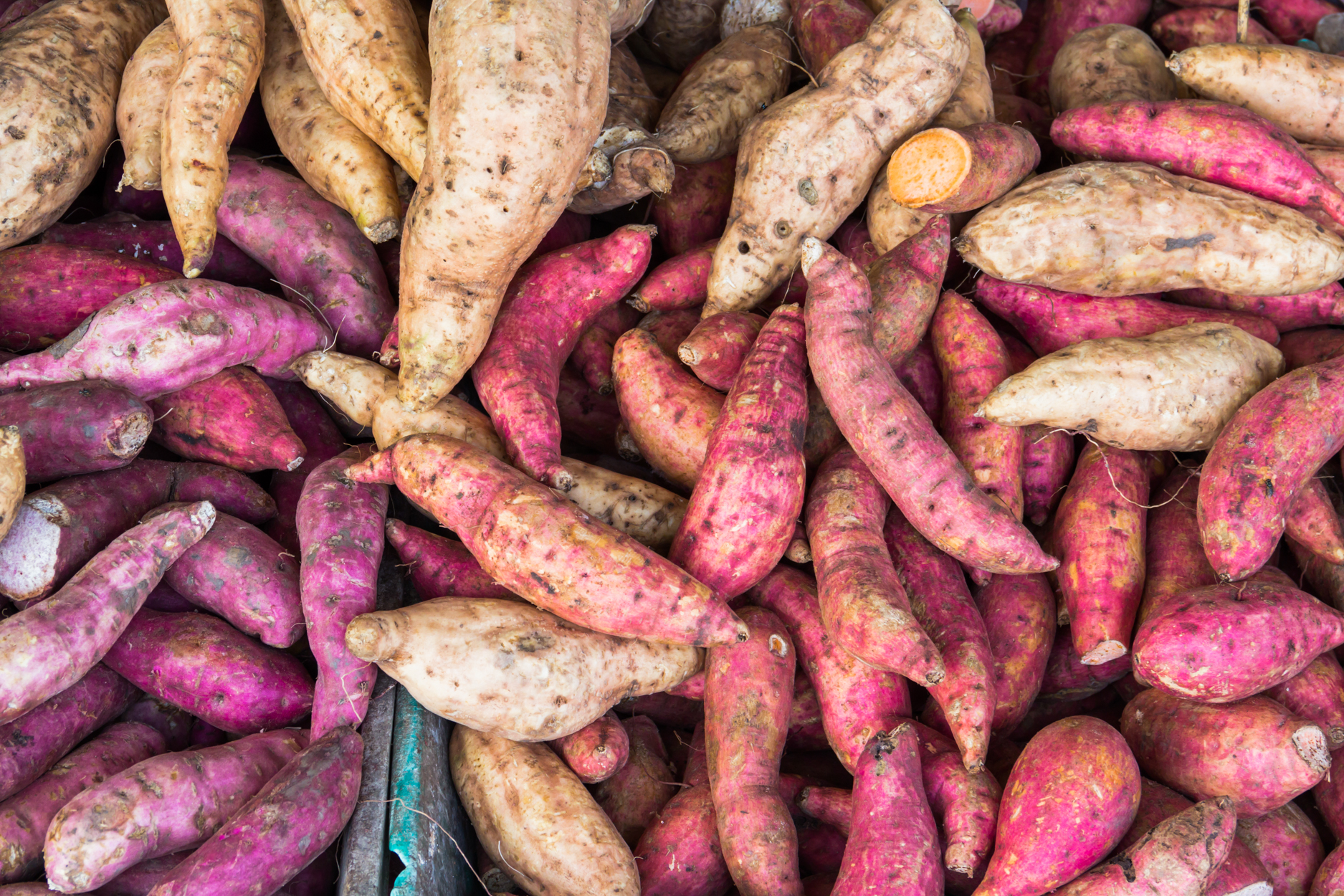 The Difference Between Yams and Sweet Potatoes Is Structural Racism