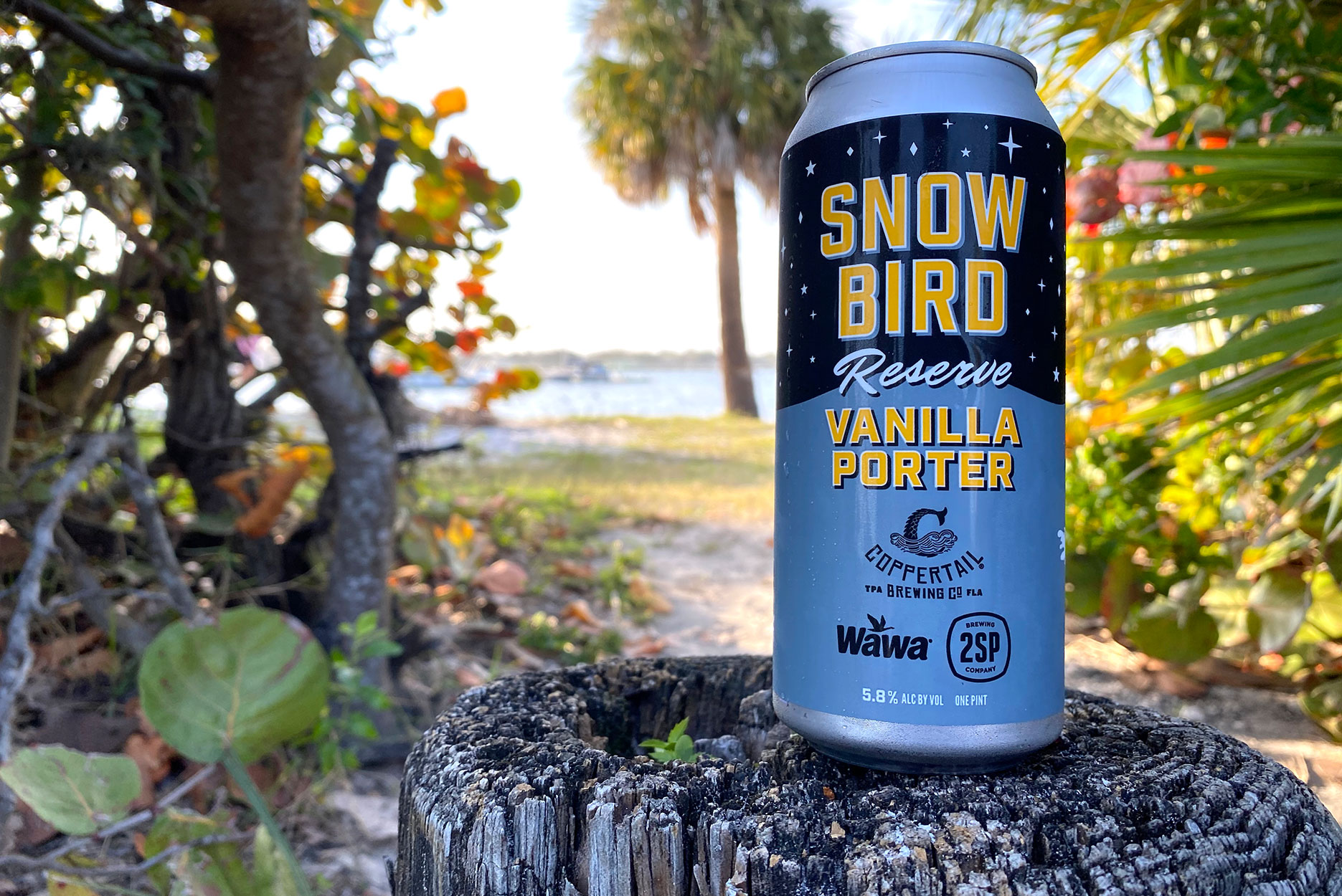 a can of wawa and coppertail's snow bird vanilla porter beer
