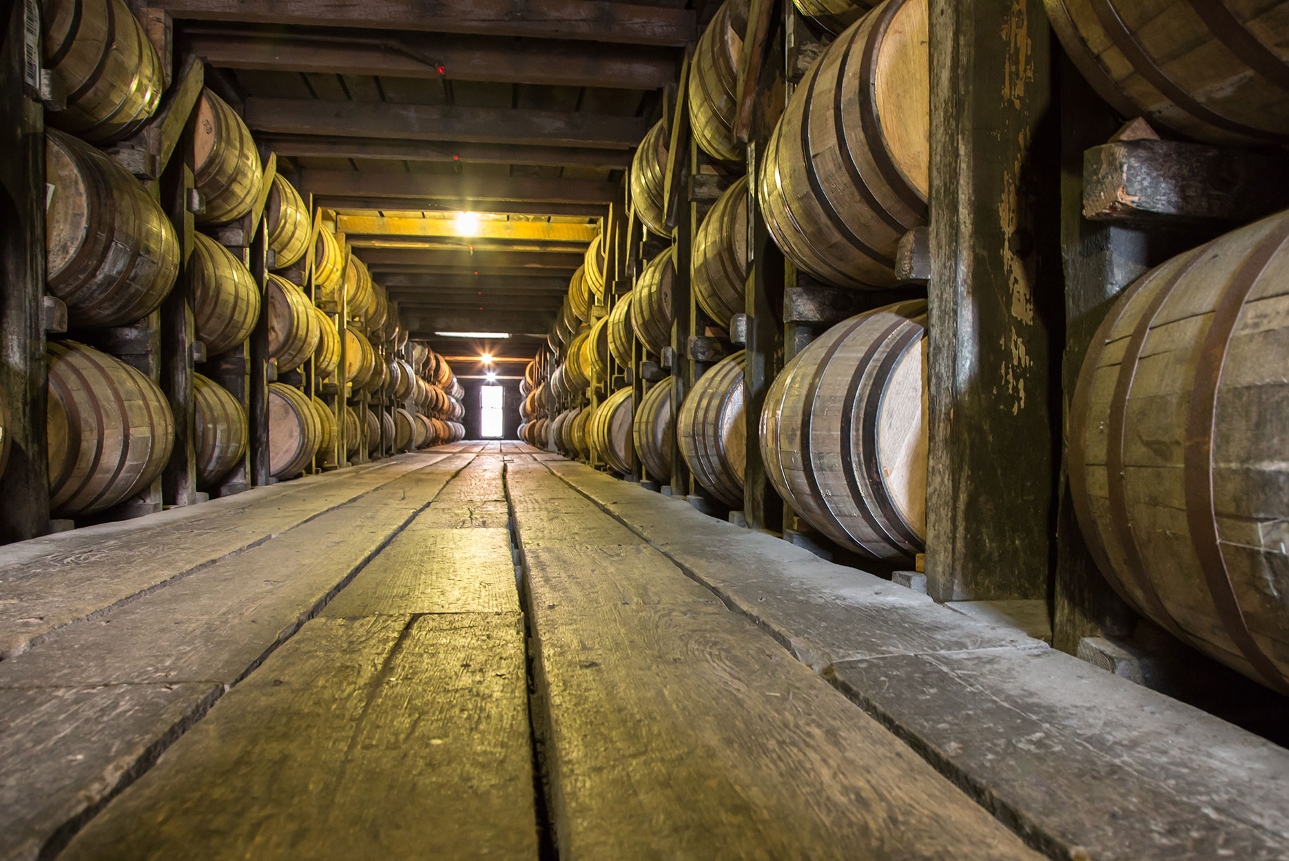 Barrels of whiskey in a cellar