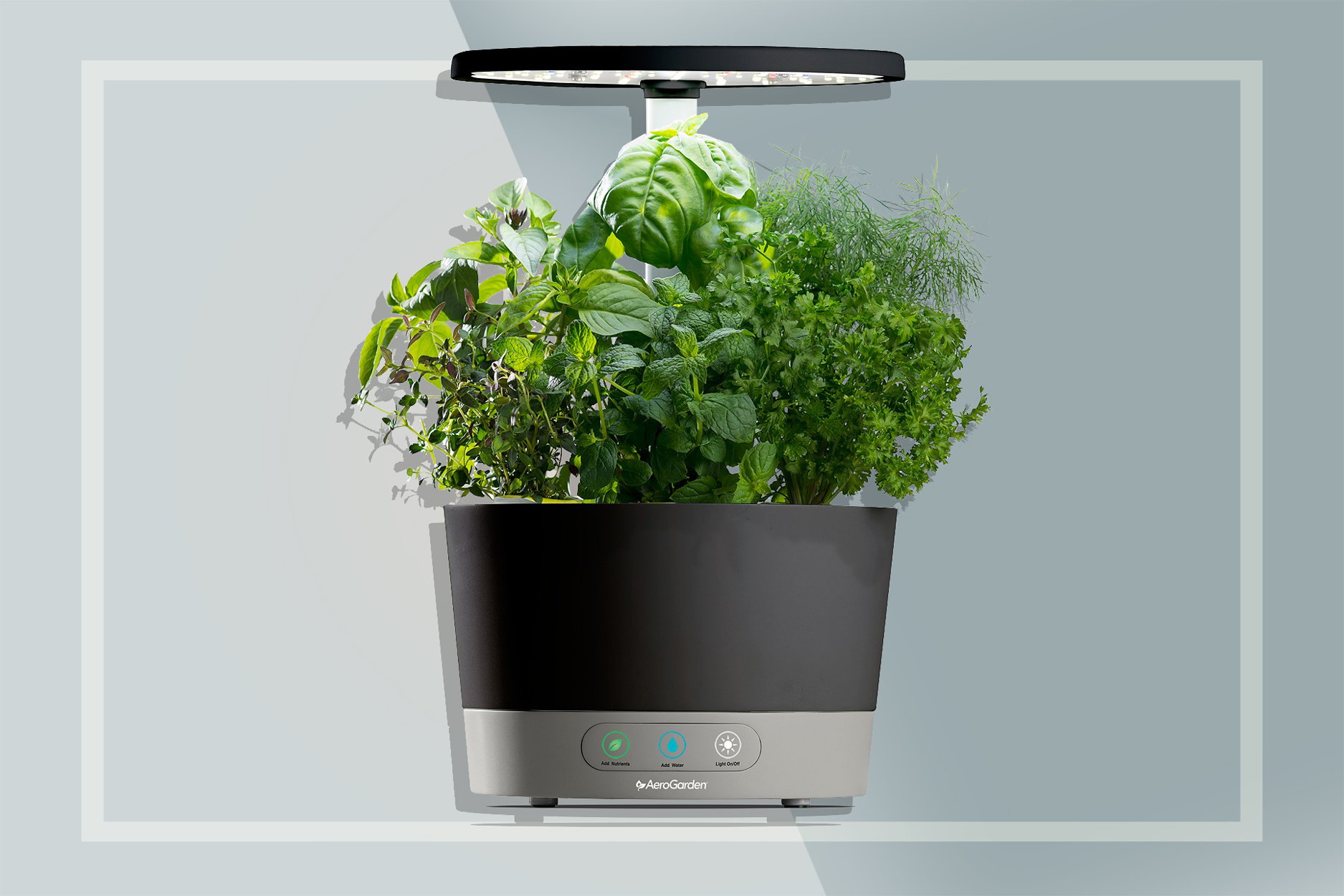AeroGarden Indoor Herb Garden Half Off
