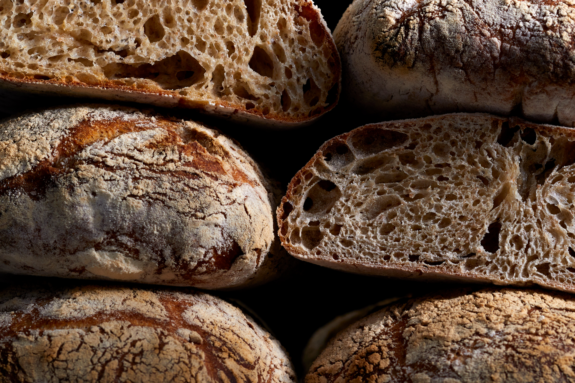Guide to Sourdough Yeast for Bread