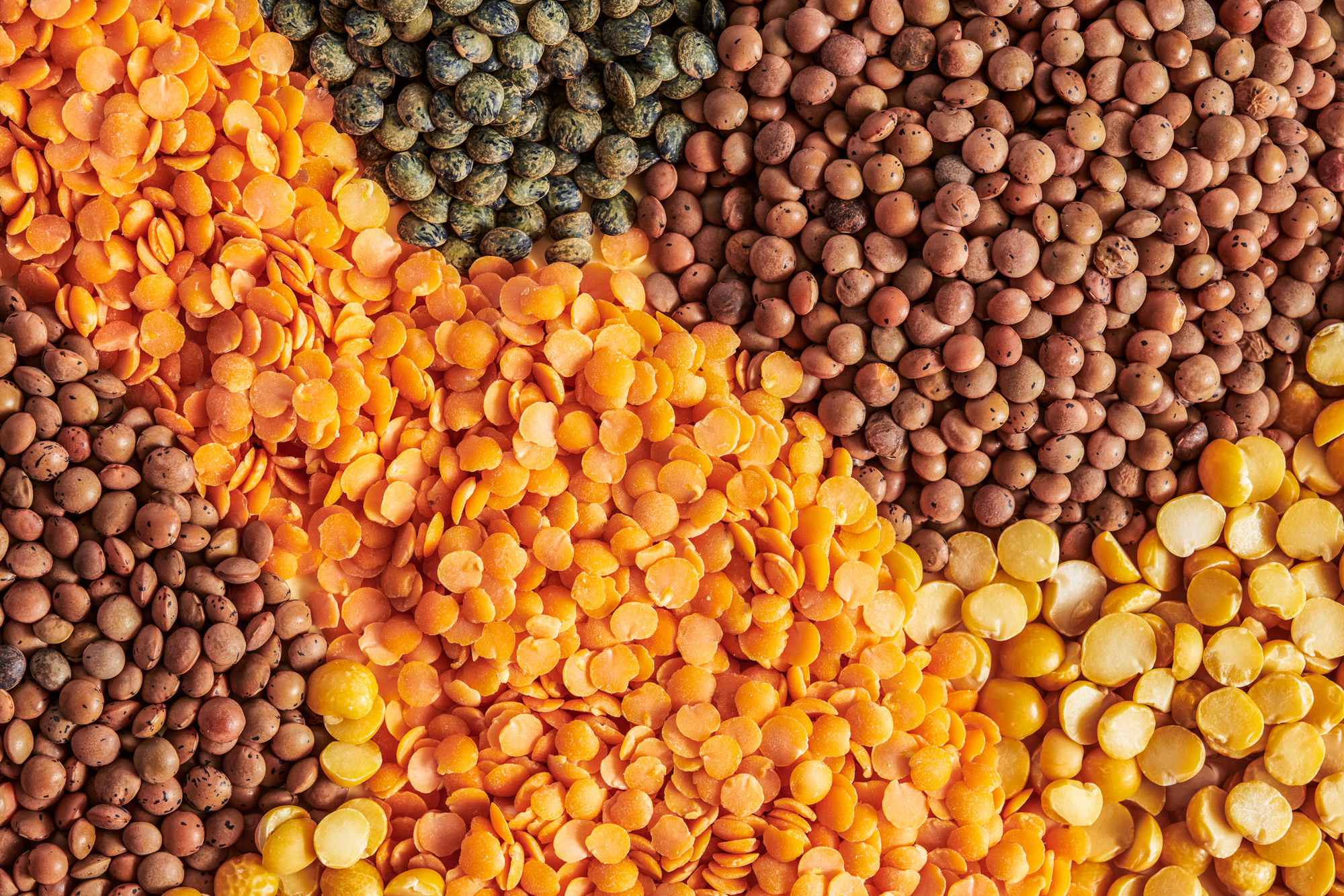 What To Do With Lentils