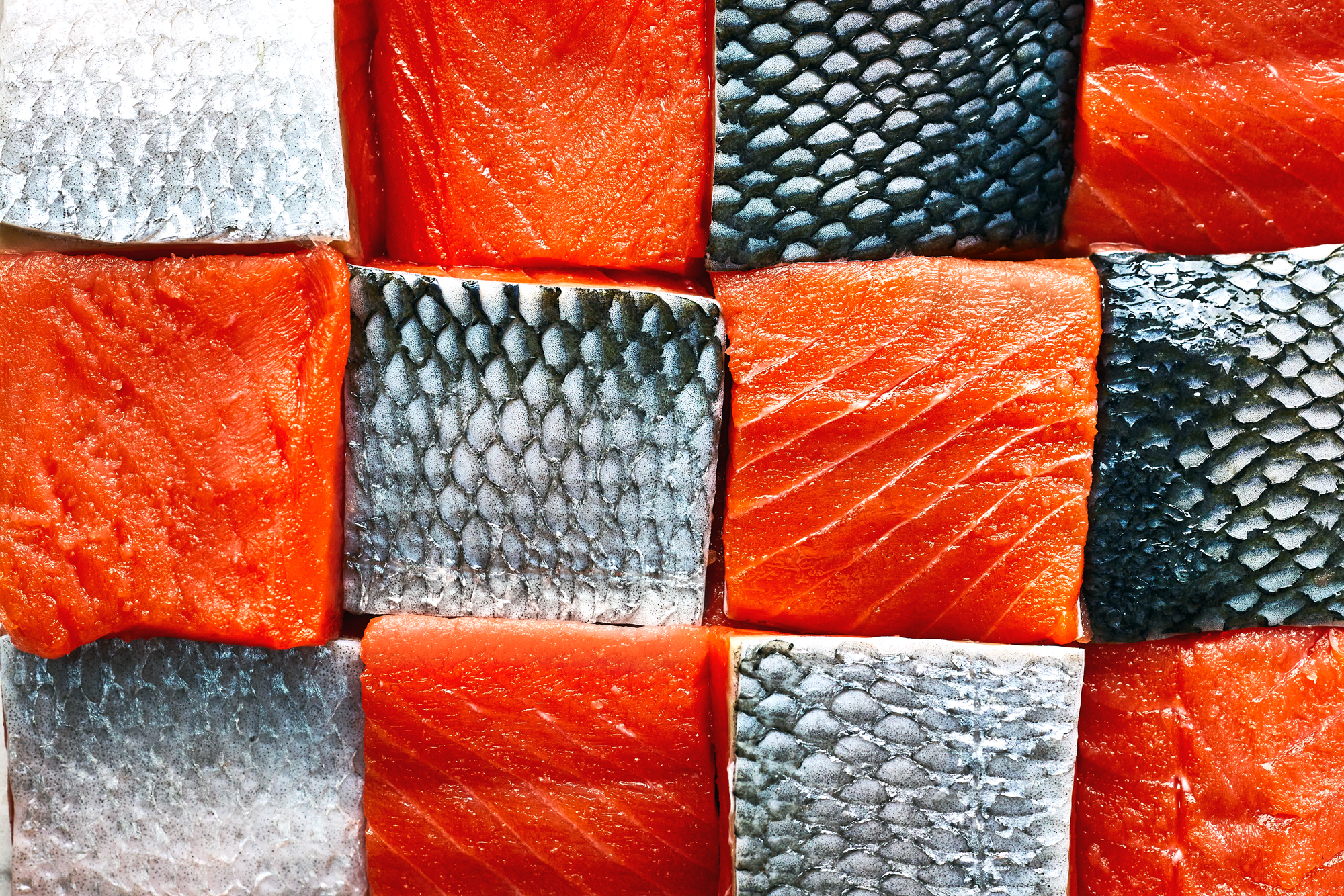 Guide to Salmon Cuts