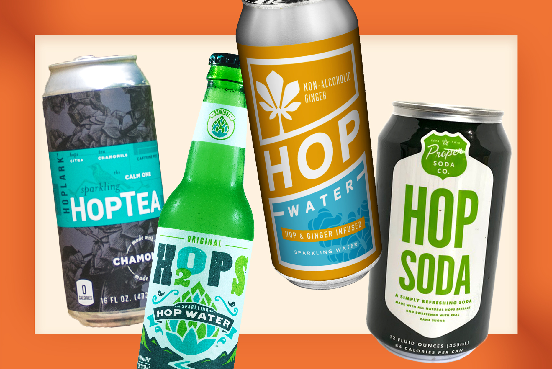 Hoppy Drinks That Are Not Beer