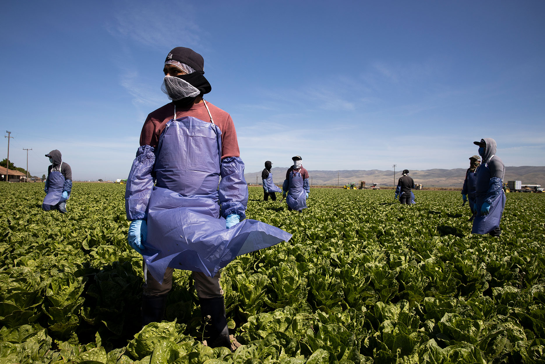 Farm laborers from Fresh Harvest working with an H-2A visa maintain a safe distance as a machine is moved on April 27, 2020 in Greenfield, California. Fresh Harvest is the one of the largest employers of people using the H-2A temporary agricultural worker visa for labor, harvesting and staffing in the United States. The company is implementing strict health and safety initiatives for their workers during the coronavirus pandemic and are trying a number of new techniques to enhance safety in the field as well as in work