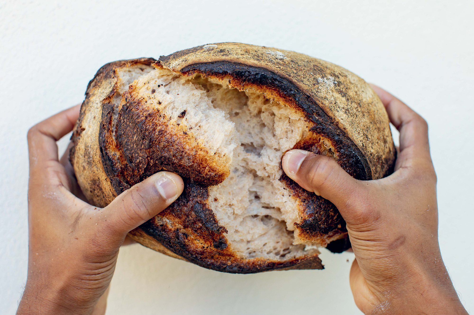 Bryan Ford | New World Sourdough