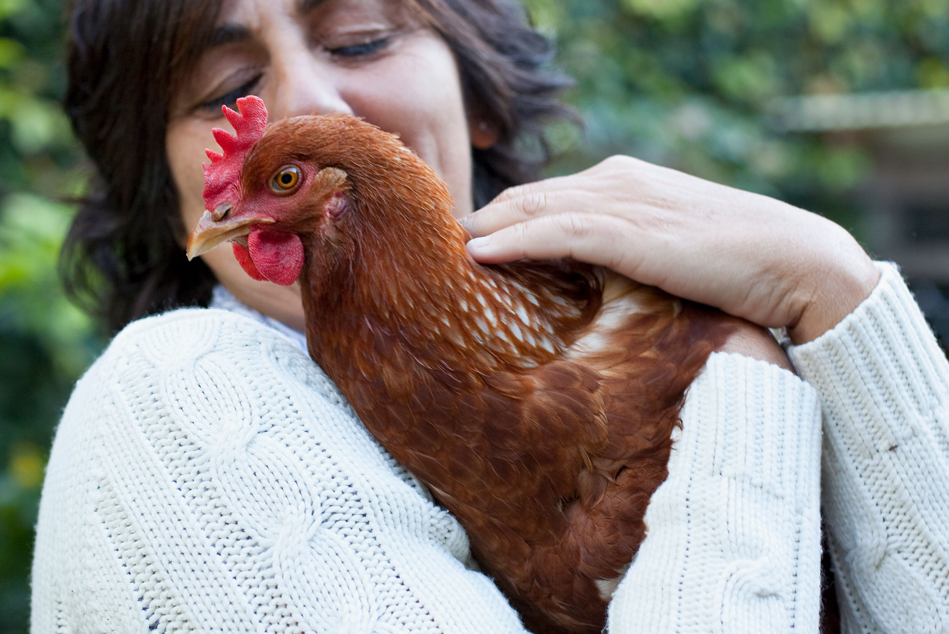 woman cuddling a chicken