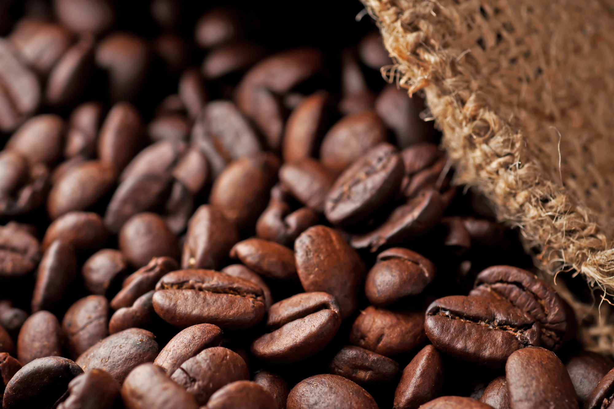 Cocaine Smuggling Coffee Beans