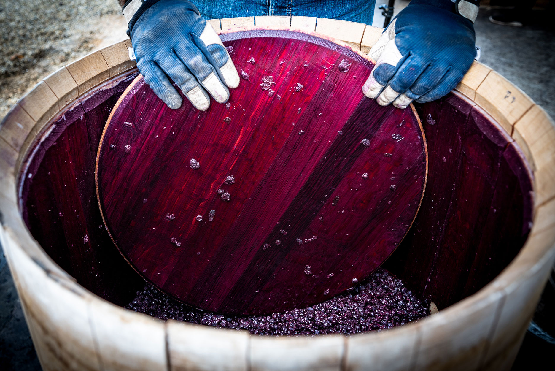 Wine mixing during fermentation process in barrel, Bordeaux Vineyard