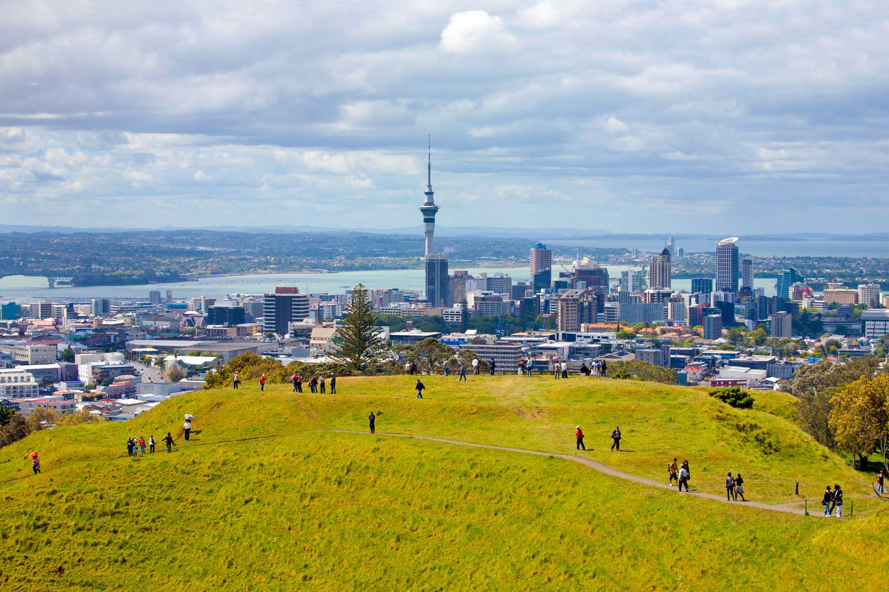 Auckland Guide