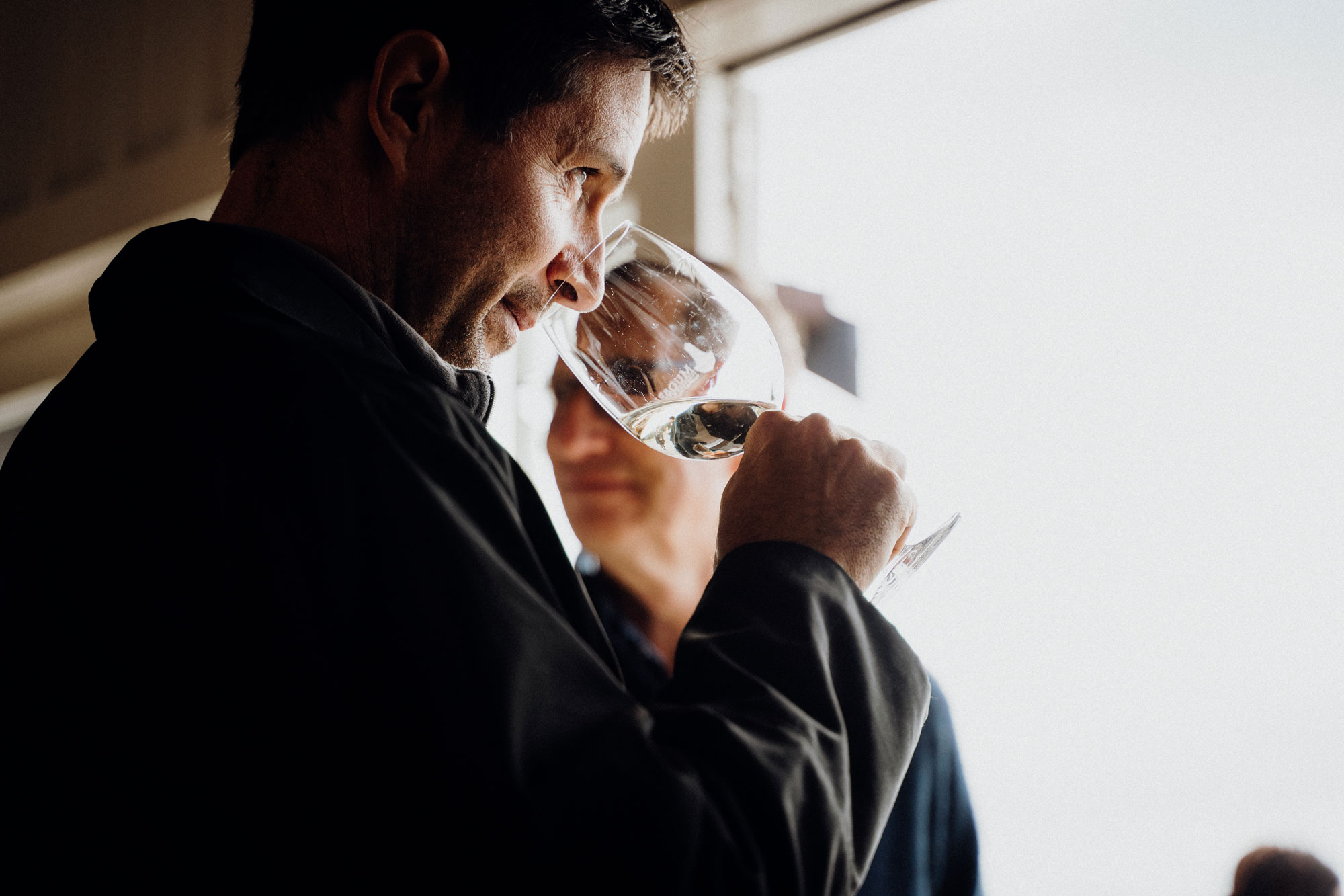 Auckland Wine Guide