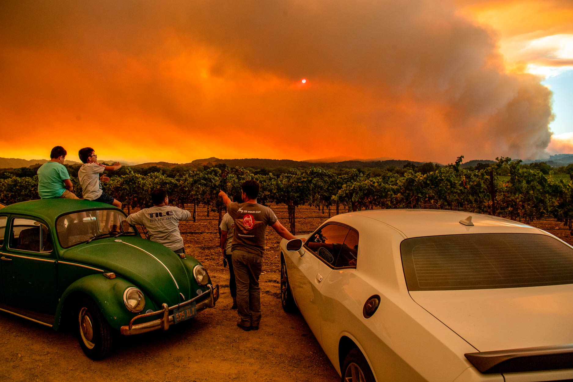 People watch the Walbridge fire, part of the larger LNU Lightning Complex fire, from a vineyard in Healdsburg, California on August 20, 2020.