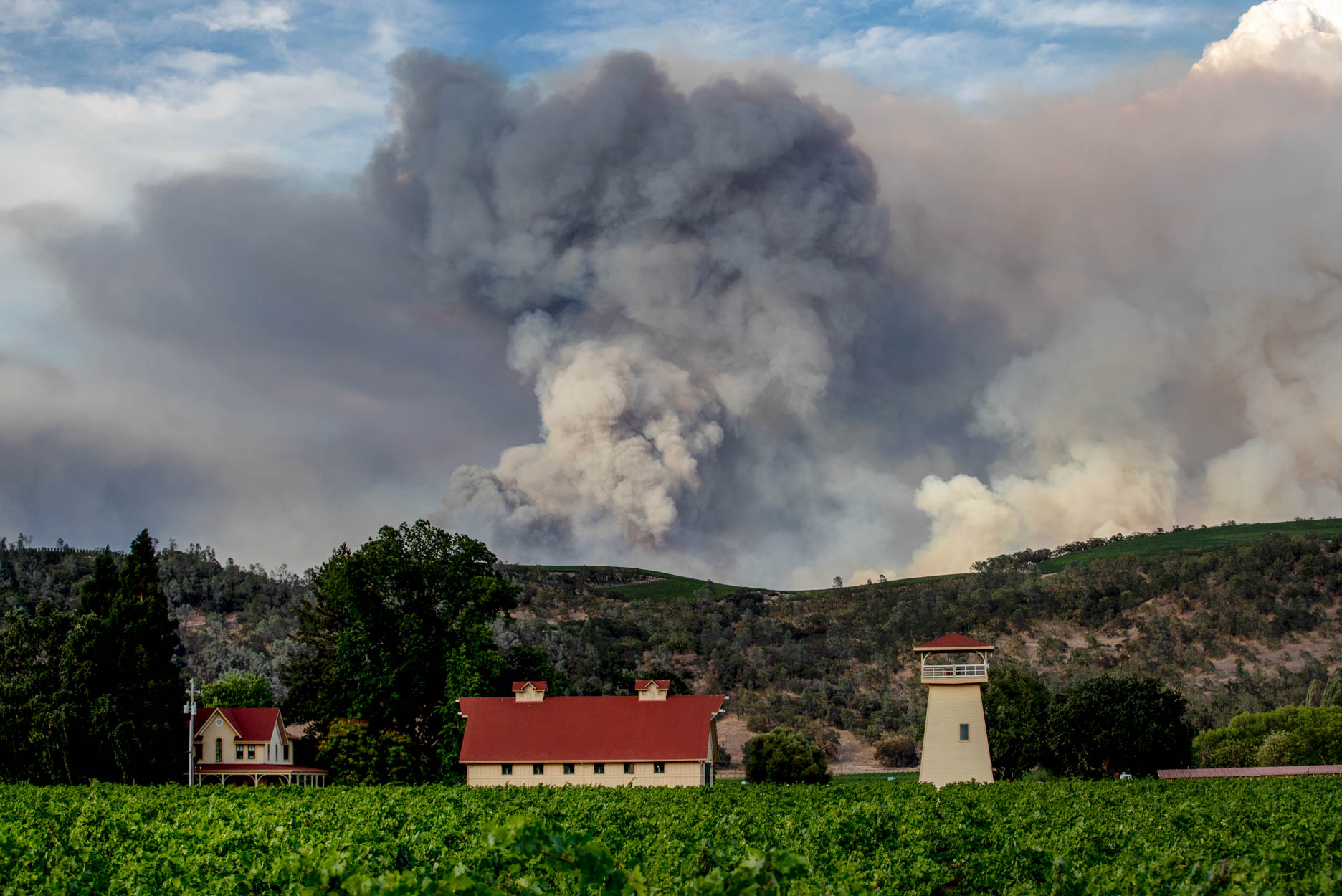 The Hennessey Fire rages in the mountains behind the Beckstoffer Vineyards in Napa, Calif., Tuesday, Aug., 18, 2020.