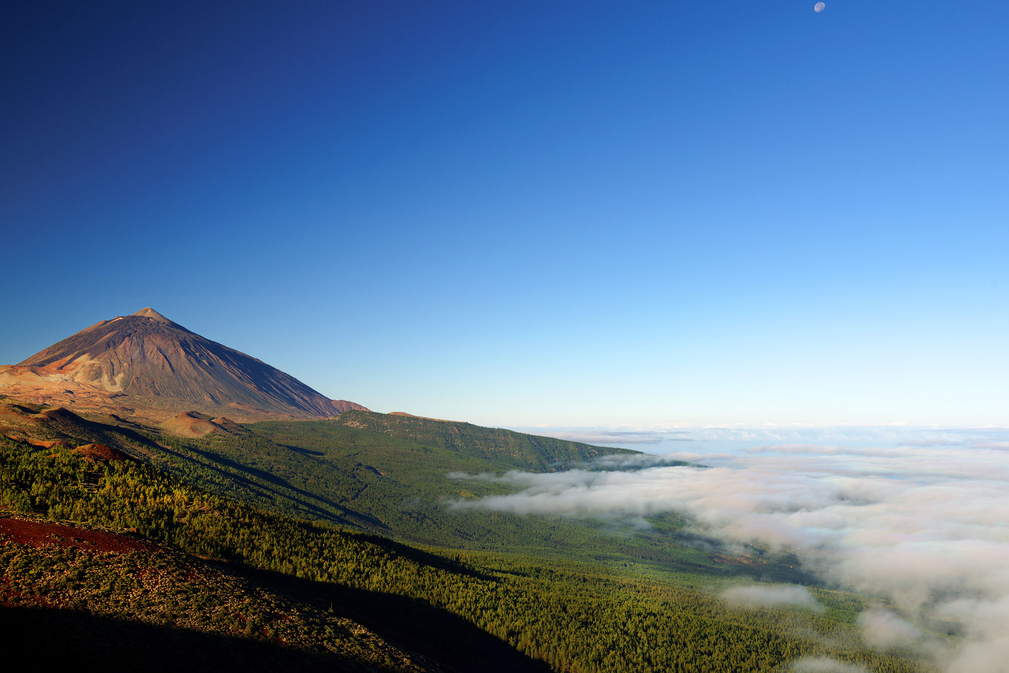 The Teide volcano on Tenerife overlooks a vast national park and some of Europe's highest vineyards.