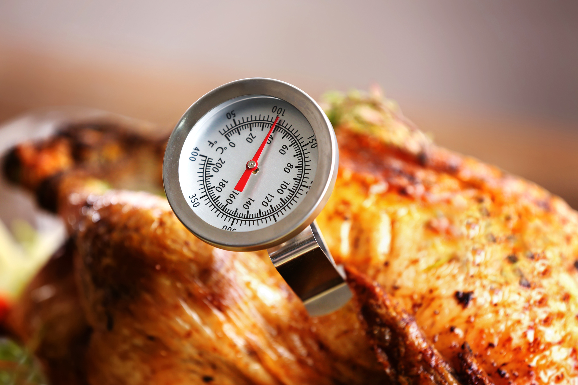 Meat thermometer in a turkey