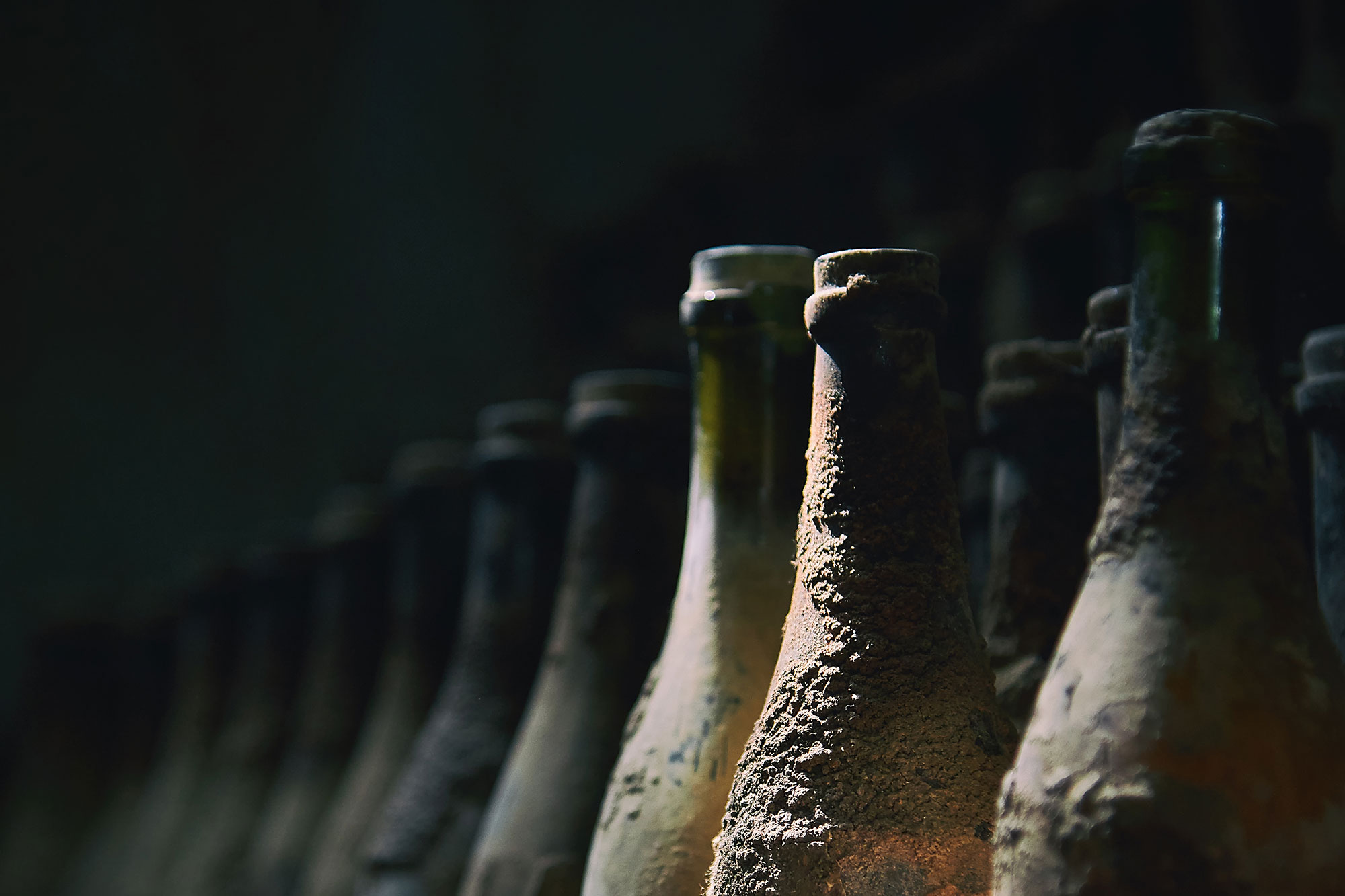 Old wine bottles in row