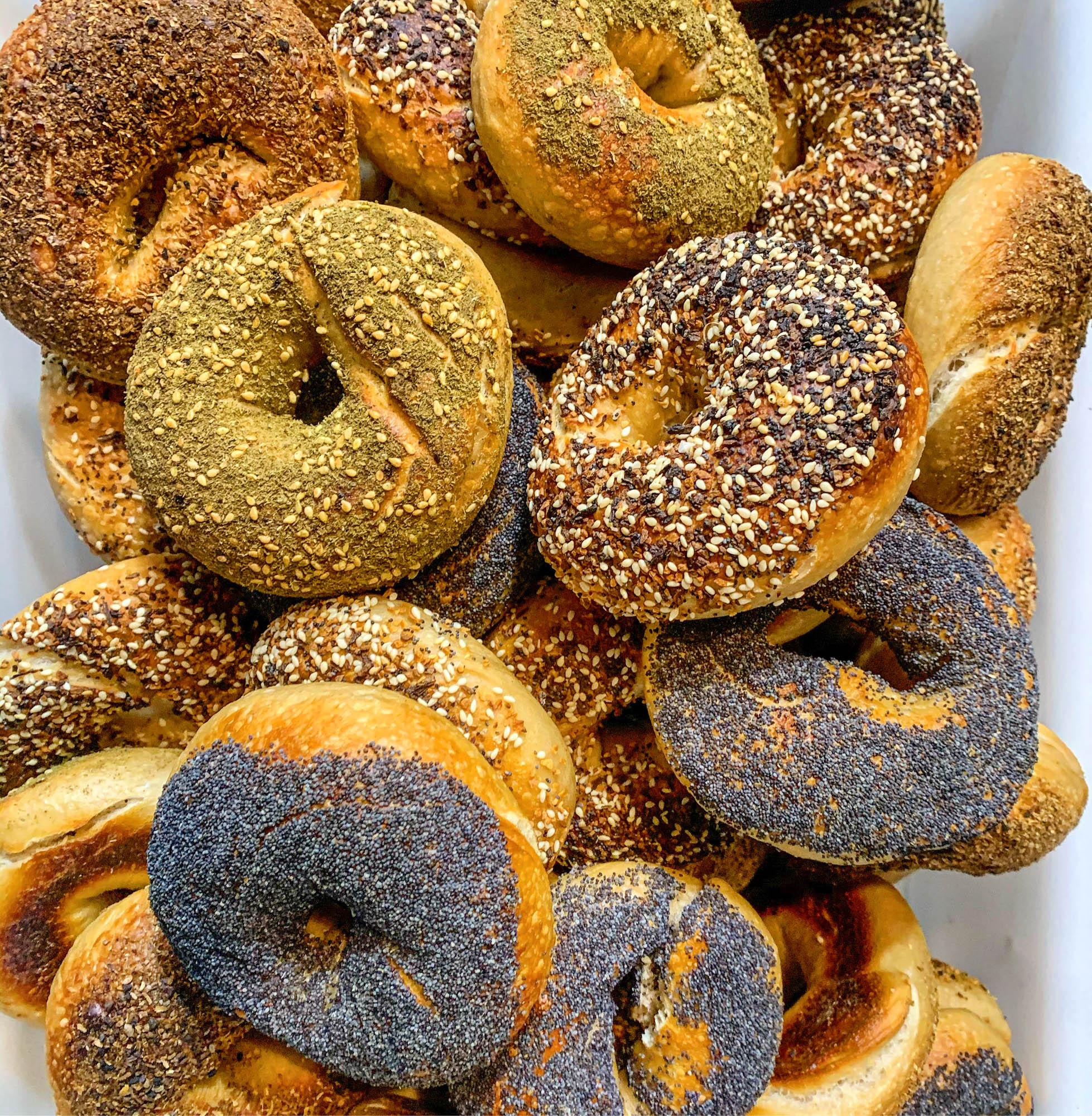Bagels and Kingston Bread and Bar