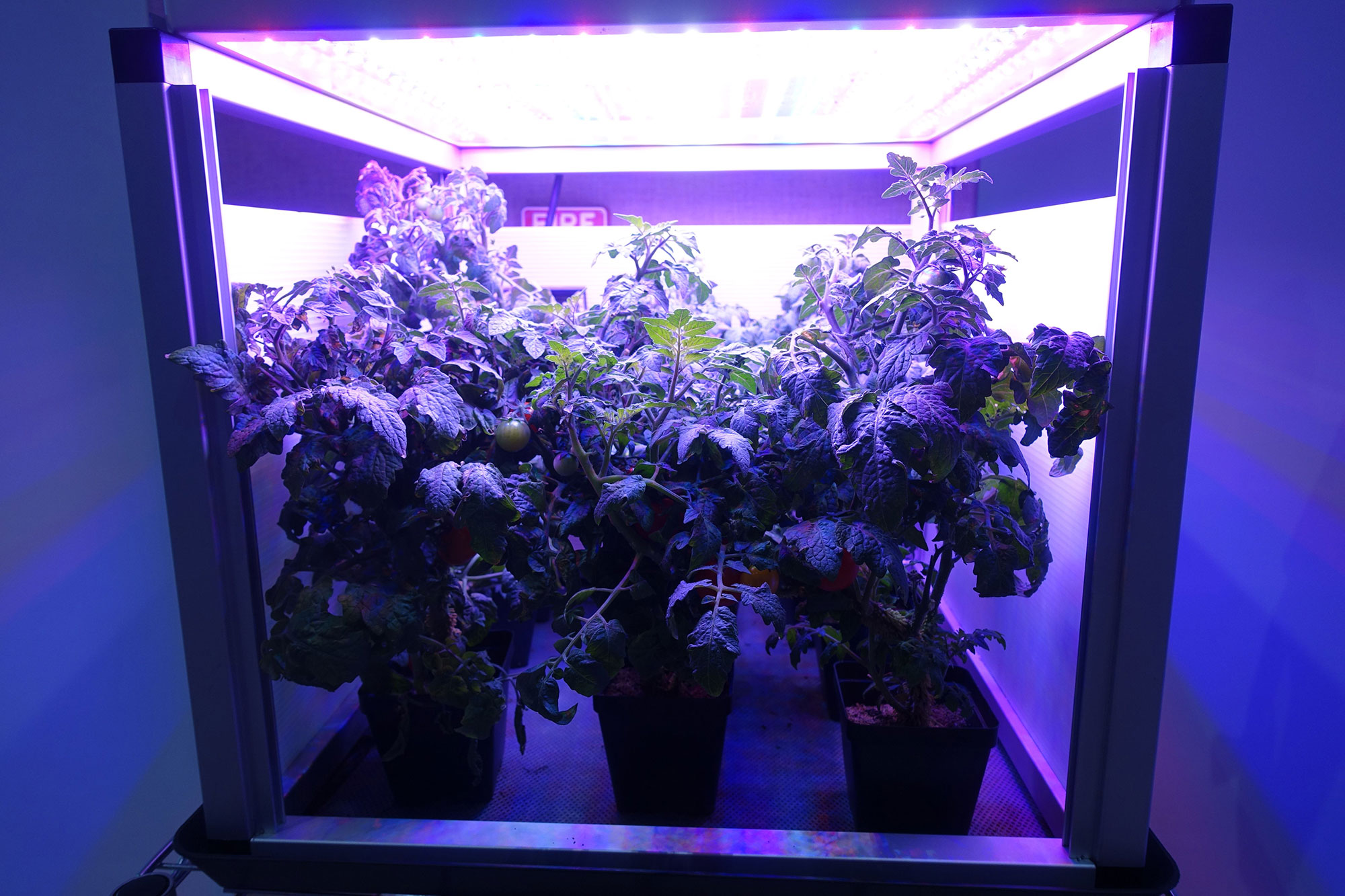 DOUNIAMAG-US-SCIENCE-SPACE-EDUCATION-HORTICULTURE