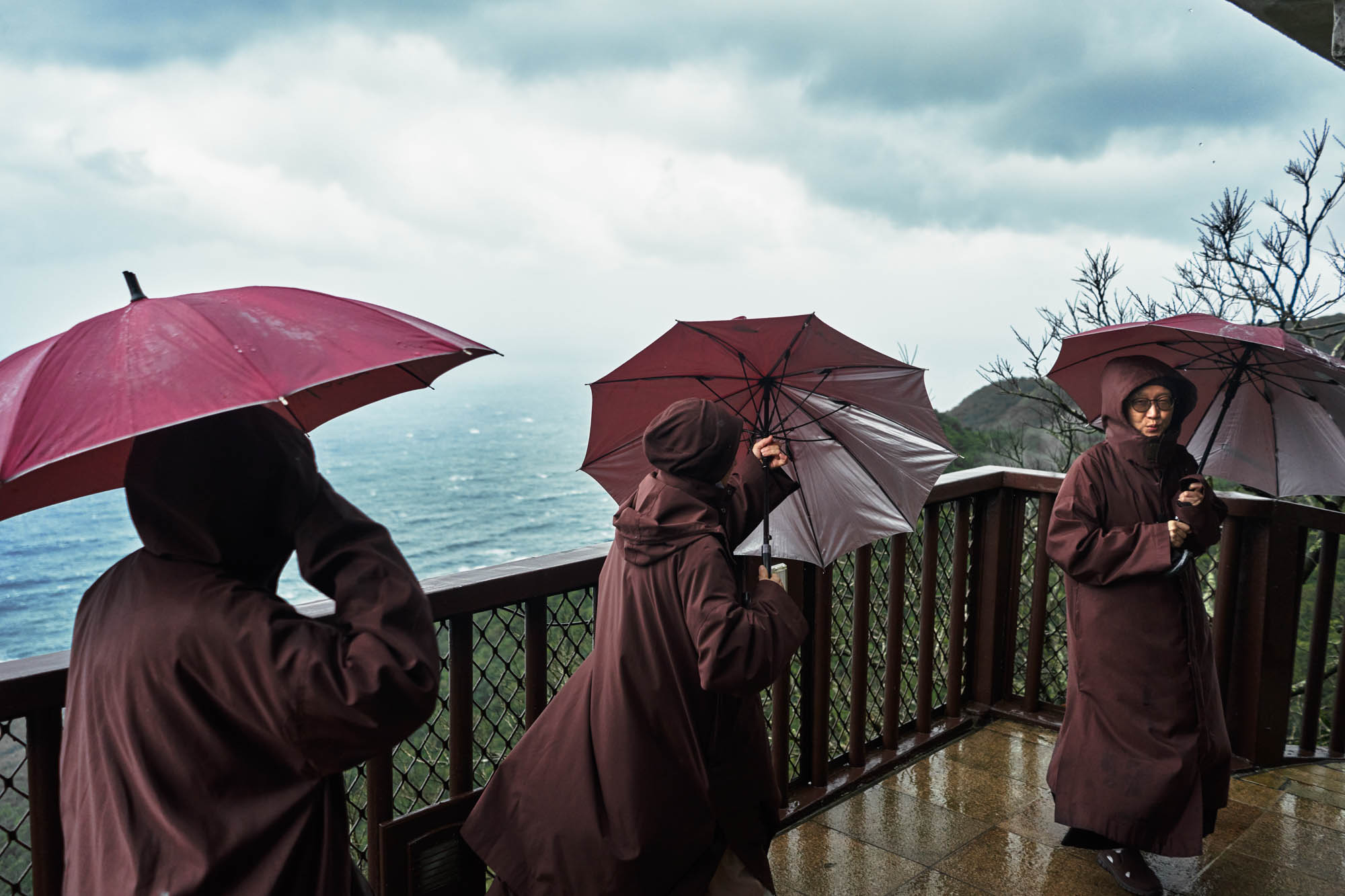A group of nuns moving about the Ling Jiou Mountain Buddhist Society in Taiwan