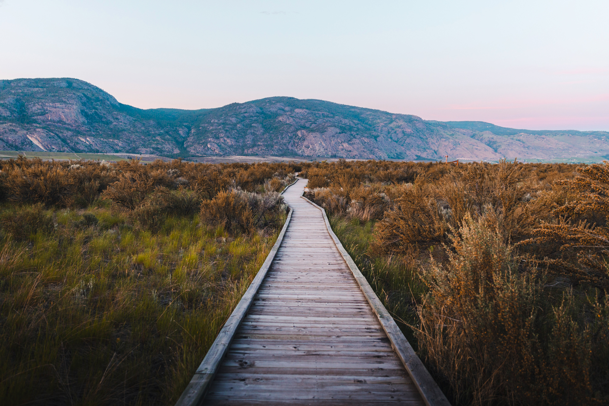 Osoyoos Desert Centre's iconic boardwalk