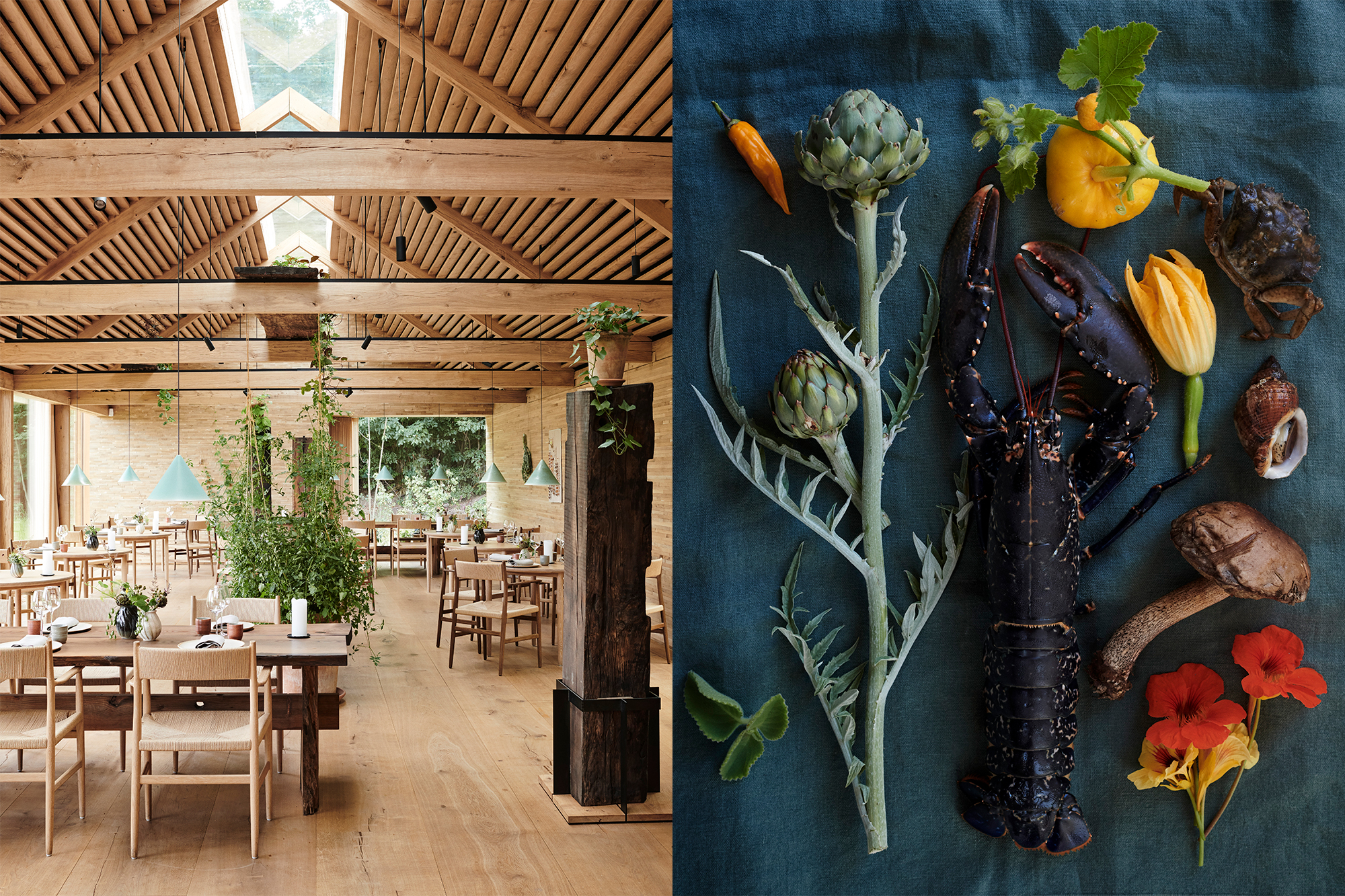 Noma interior and lobster photo