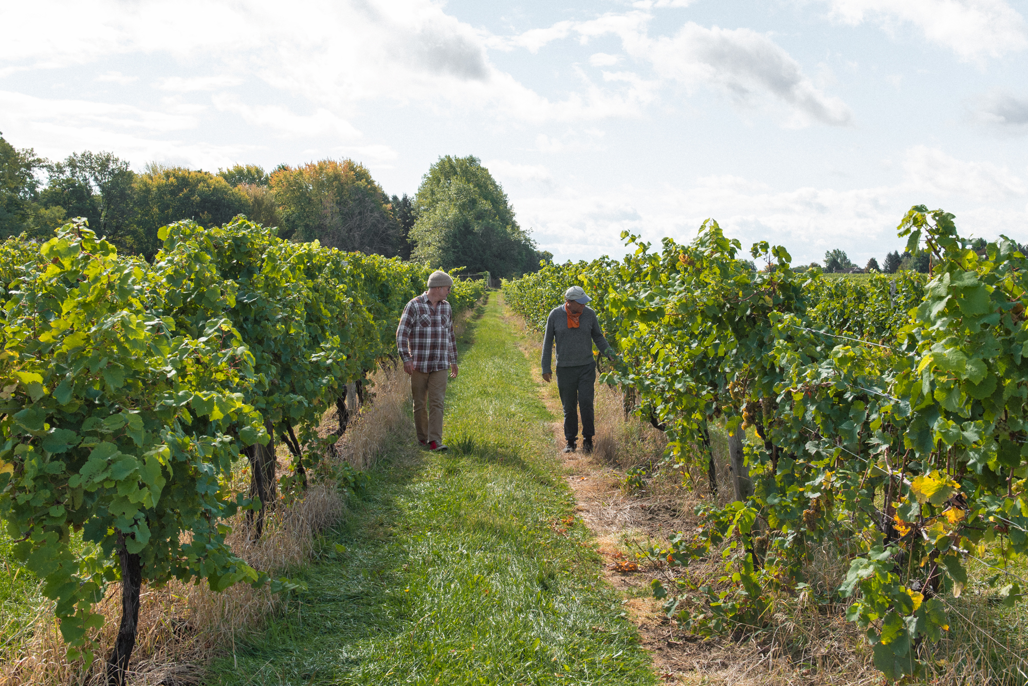 the author and his friend in a vineyard