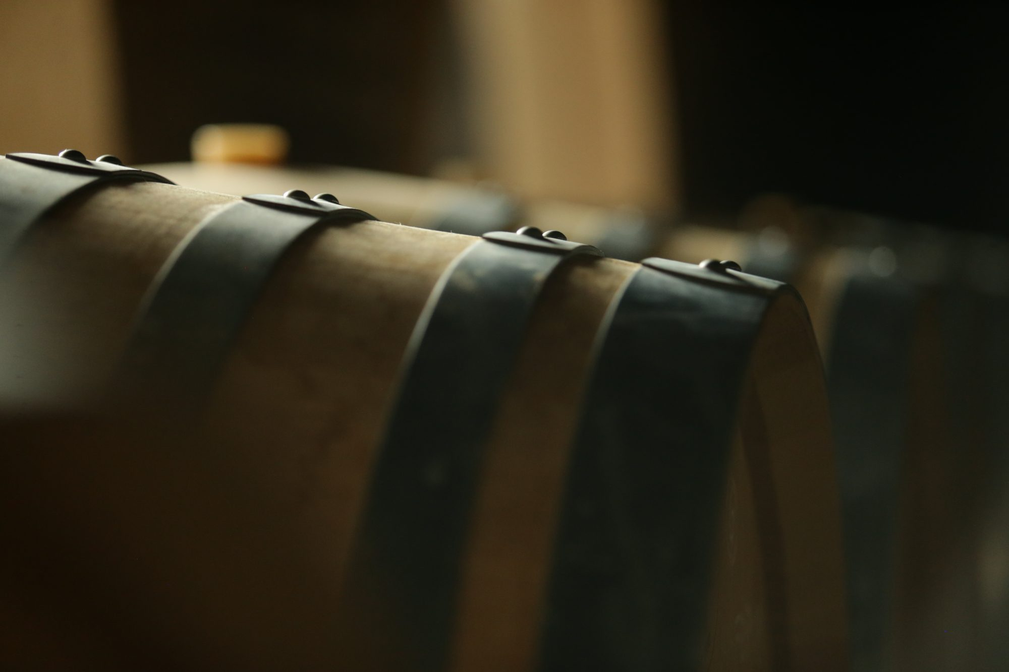 Cellar With Wooden Barrels To Store Wine, Beer, Rum, Whiskey