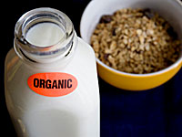 Scary Reasons to Buy Organic Milk