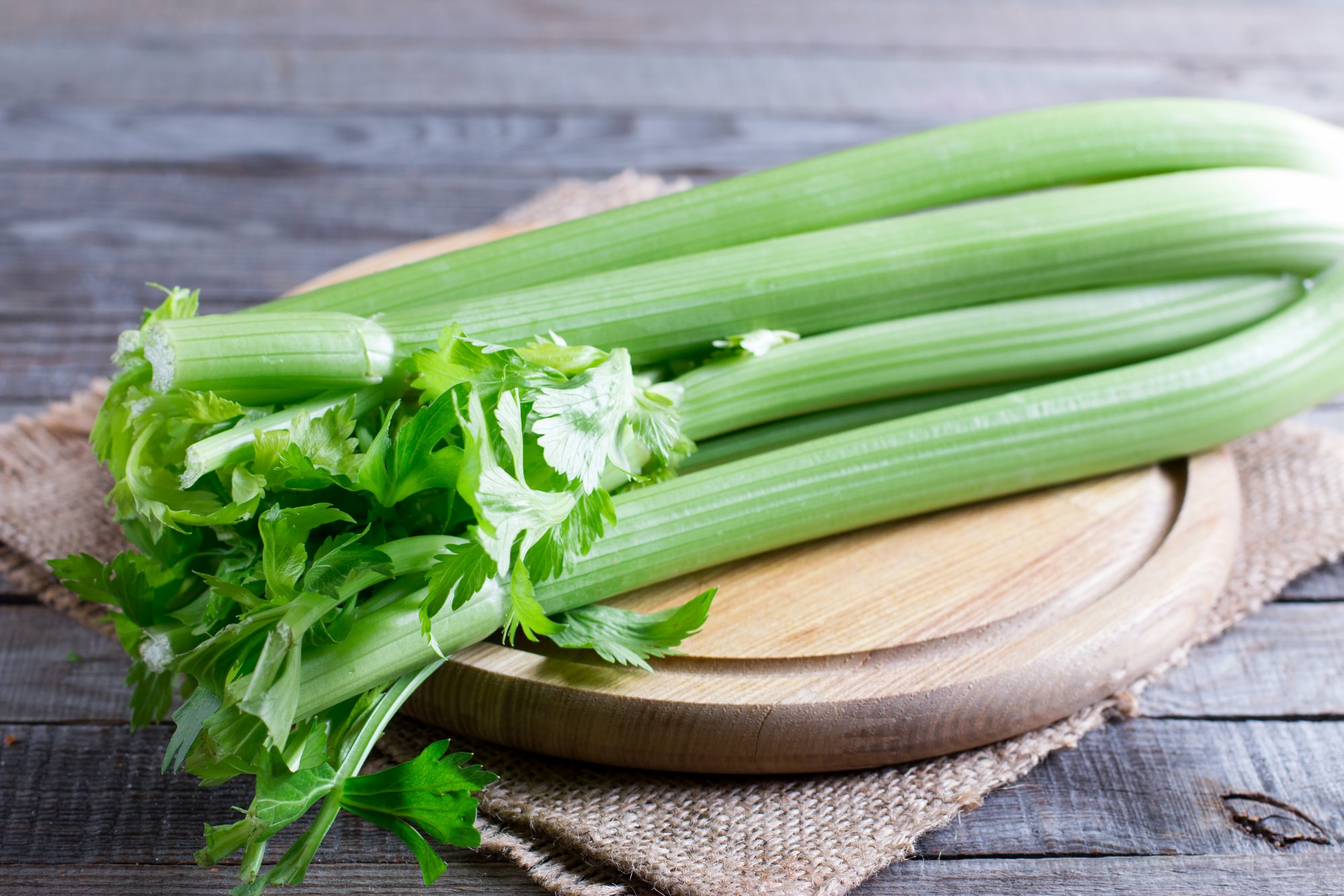 celery-weight-loss