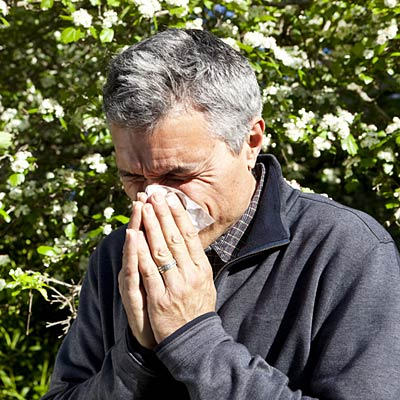 Curbing your allergies