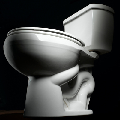 MYTH: You can catch an STD from a toilet seat