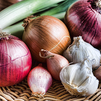 Onions, garlic, shallots, and leeks