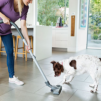 cleaning house pet allergy