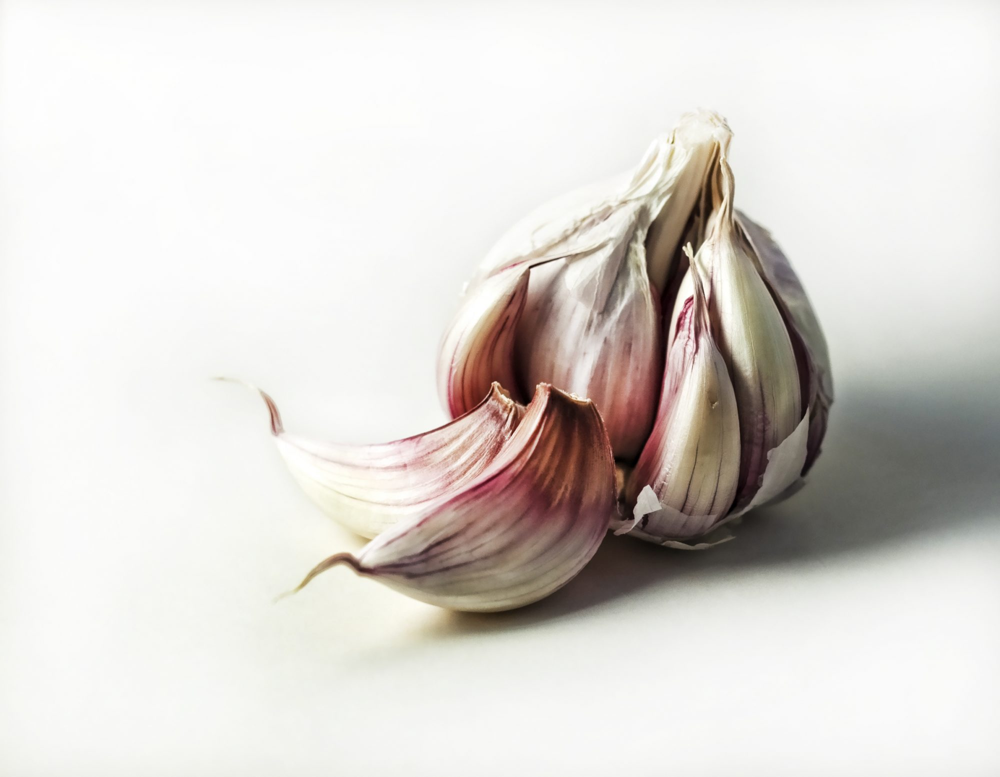 garlic-for-colds
