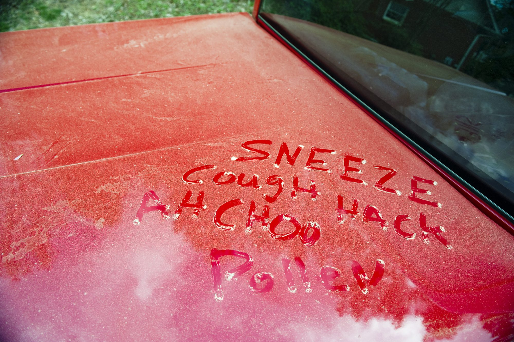car-pollen-allergy