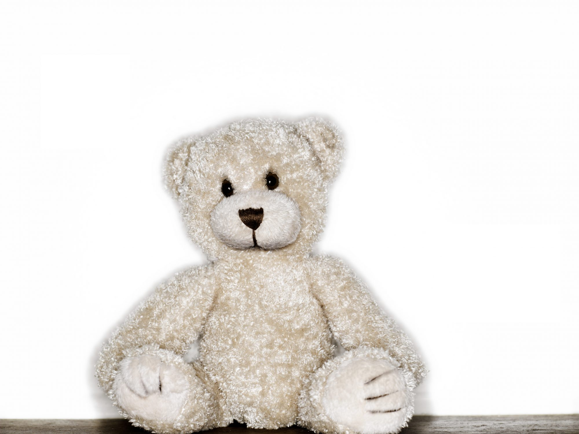 stuffed-animal-teddy-bear