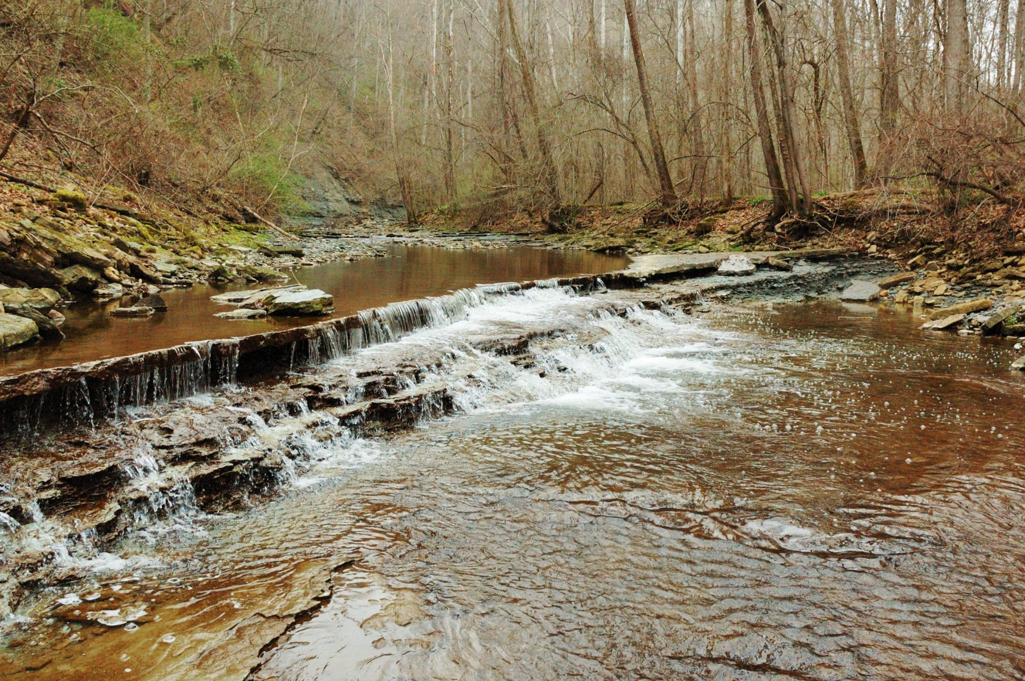 indiana-clifty-falls-hiking-trail
