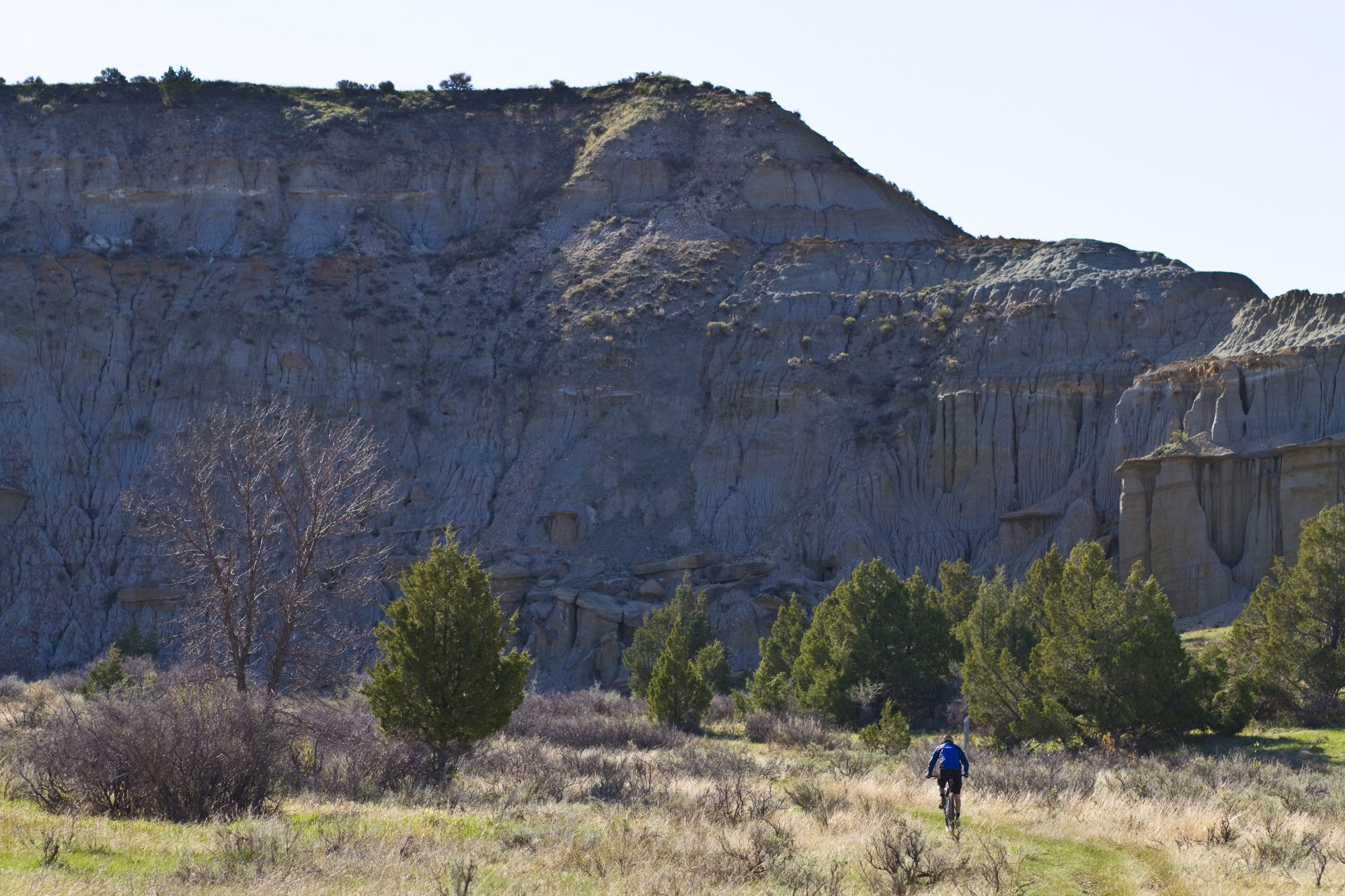 north-dakota-petrifed-forest-loop-trail-hiking