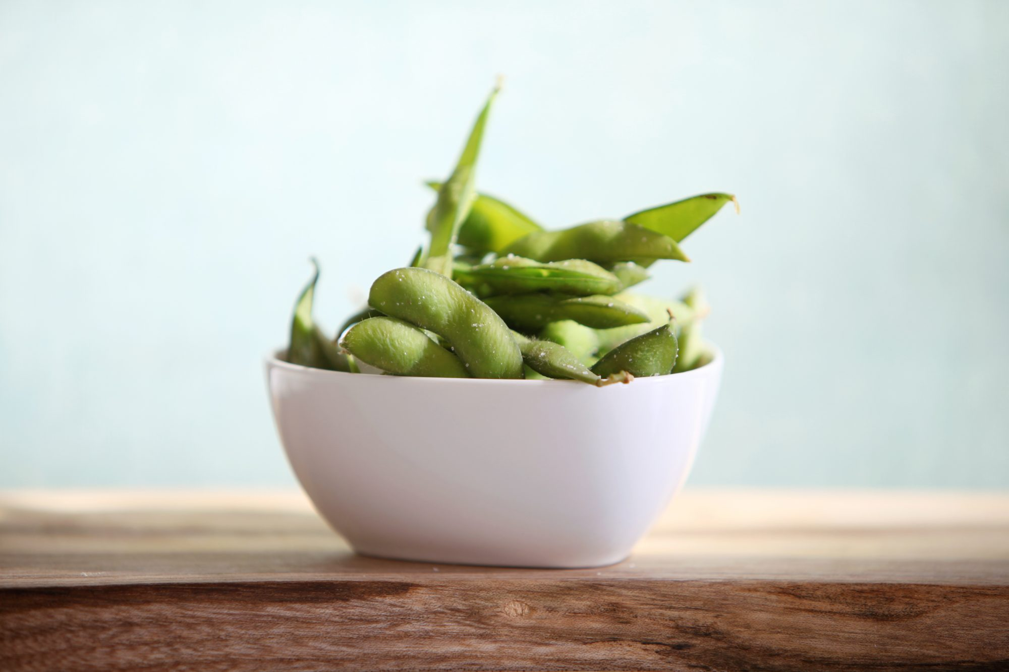 plant-protein-soy